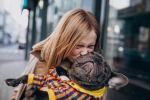 La importancia de reconocer un bulldog francés puro